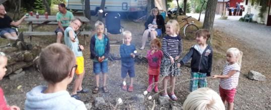 Kampvuurtje mag op onze natuur camping